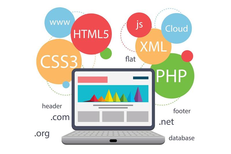 Web Sitesi Yaptırırken Hangi Yazılım Dili Kullanılmalıdır? | Web ...